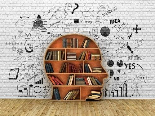 Libreria a forma di testa