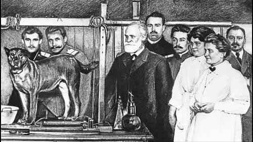 Esperimento di Pavlov
