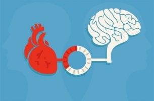 Cervello e cuore ragione e sentimento