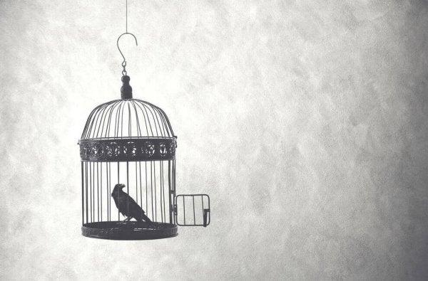 Uccello in gabbia