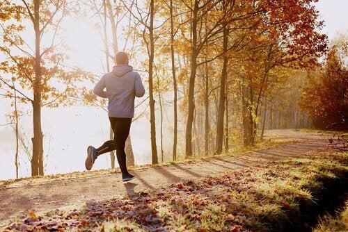 Uomo che fa running nel bosco