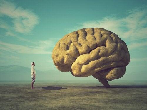Uomo che osserva un cervello