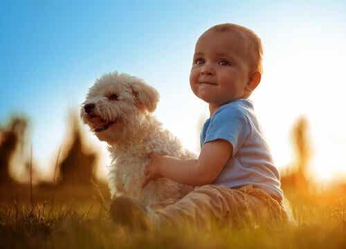 Animali e neonati: i vantaggi per la crescita
