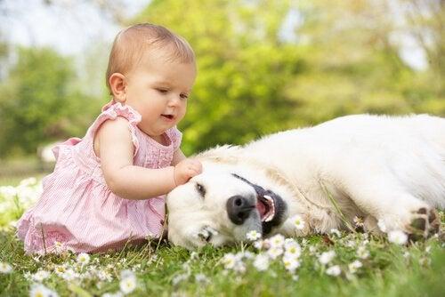 Bambina con cucciolo