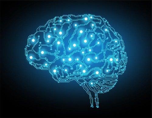 Brenda Milner: una vita dedicata alla neuropsicologia