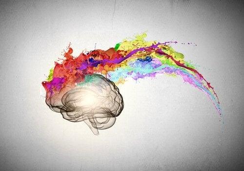 Cervello colorato