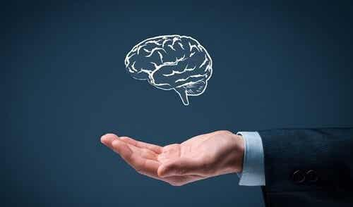 Semplicità intelligente: le 6 regole
