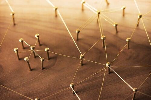 Scienze sociali: 4 modi di intenderle