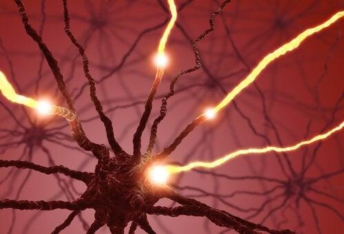 Impulsi elettrici dei neuroni