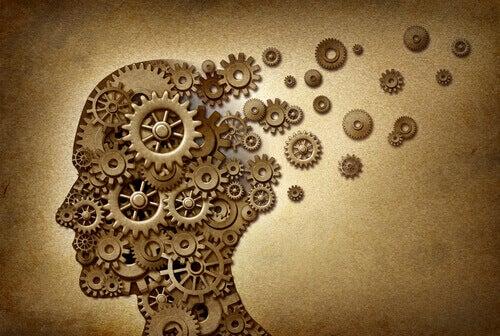 Meccanismi cerebrali