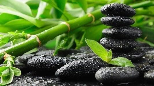Bambù con pietre nere