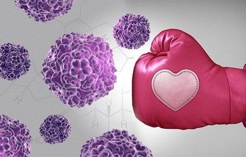 Pugno colpisce le cellule di cancro