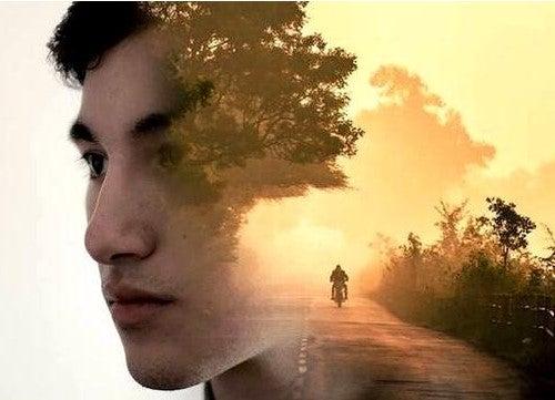 Strada da percorrere