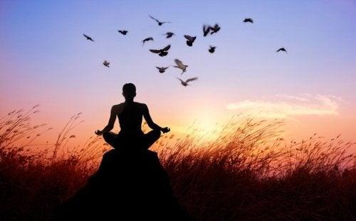 Persona che medita