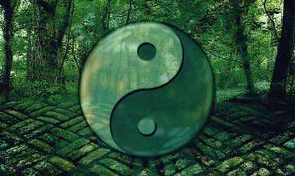 Citazioni del Tao per crescere