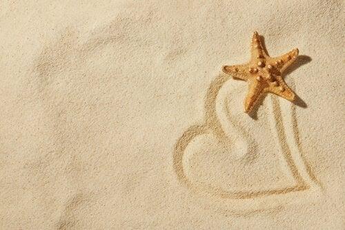 Cuore sulla sabbia e stella marina