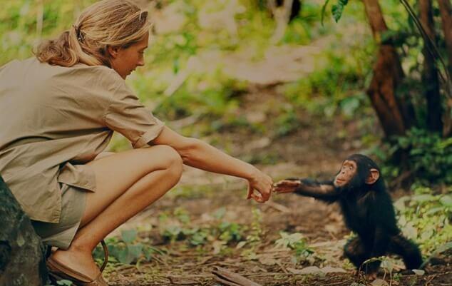 Jane Goodall da giovane