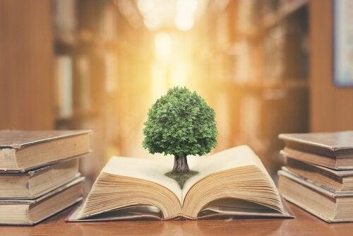 La letteratura e la poesia