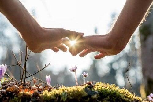 Mani sopra un fiore