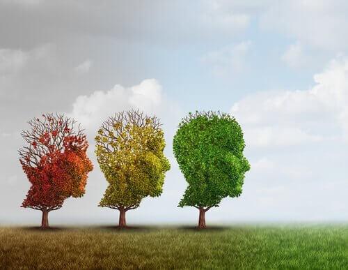Tre alberi con fogliame a forma di testa