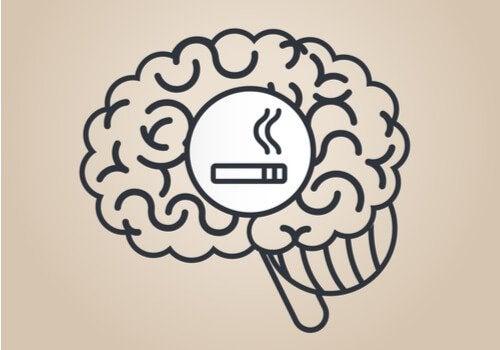 Effetti della nicotina sul cervello