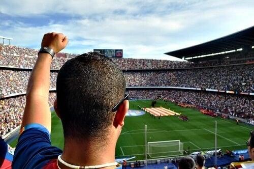 Tifoso esulta per gol allo stadio della sua squadre