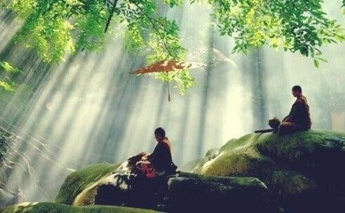 Buddismo zen e le porte dell'energia