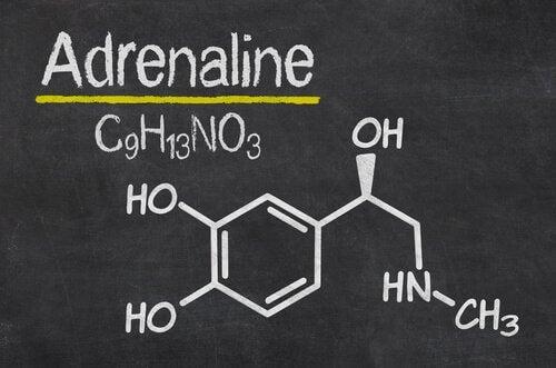 Composizione chimica dell'adrenalina
