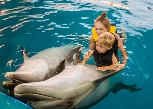 Bambino pratica delfinoterapia