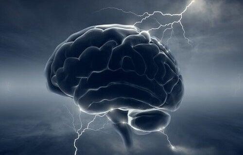 Cervello oscuro