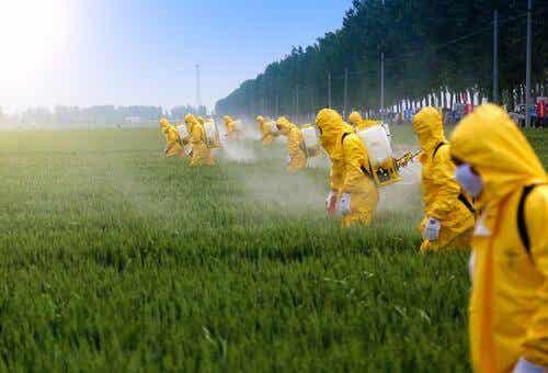 Effetti dei pesticidi sul cervello