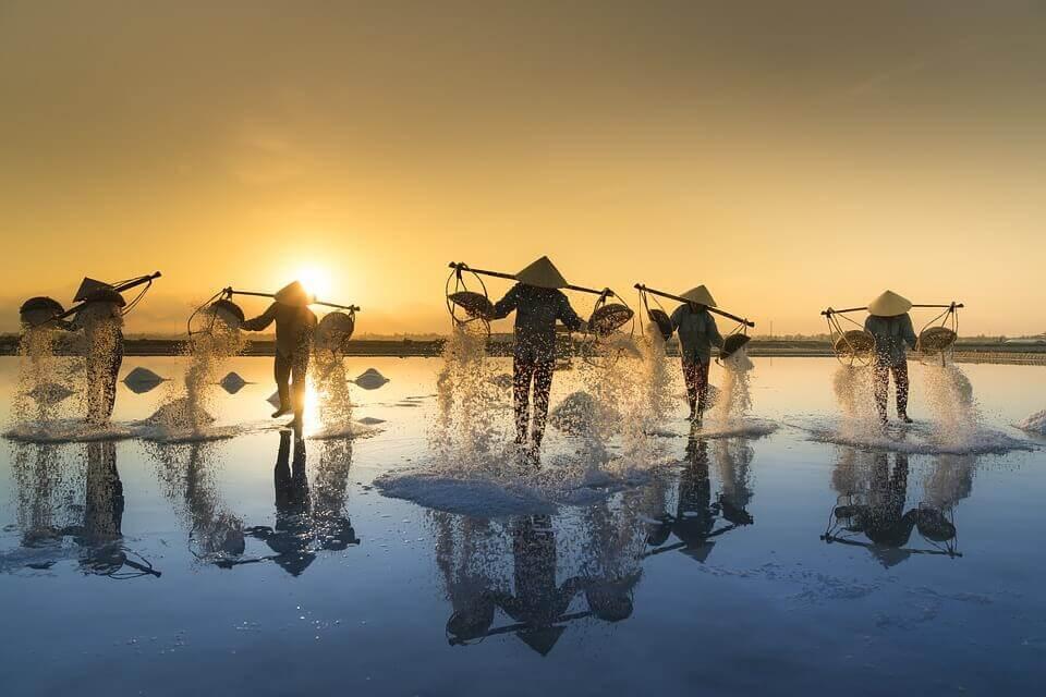 lavoratori del sale vietnamiti