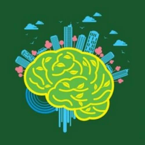 Neuroarchitettura: ambiente e cervello