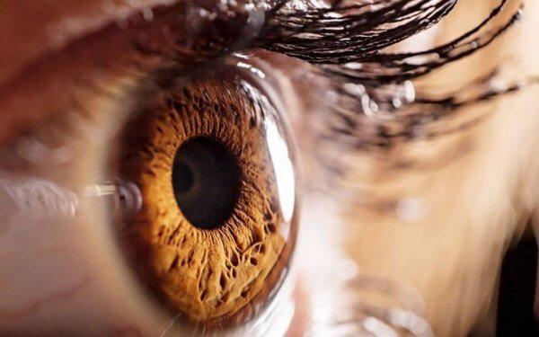 Ingrandimento di un occhio castano