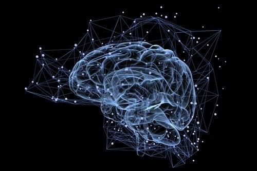 Punti del cervello illuminati su fondo scuro