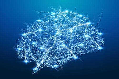 Cervello illuminato grande intelligenza