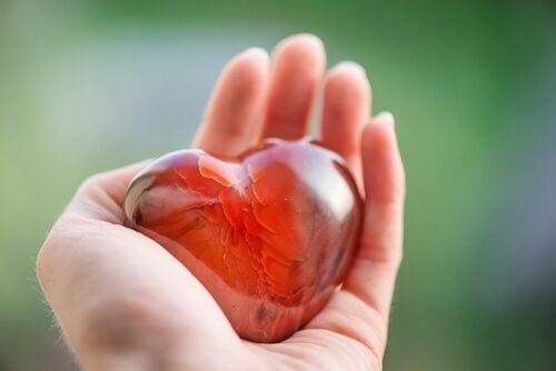 L'influenza dei sentimenti sul cuore