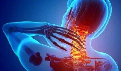 Nocicettori: i recettori del dolore