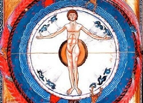 Rappresentazione anatomia umana