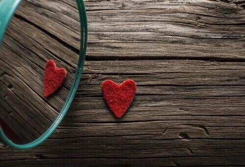 Riflesso di un cuore