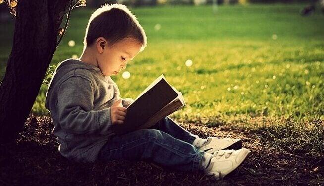 Bambino legge seduto contro un albero
