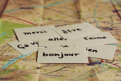 Il bilinguismo difende dall'Alzheimer