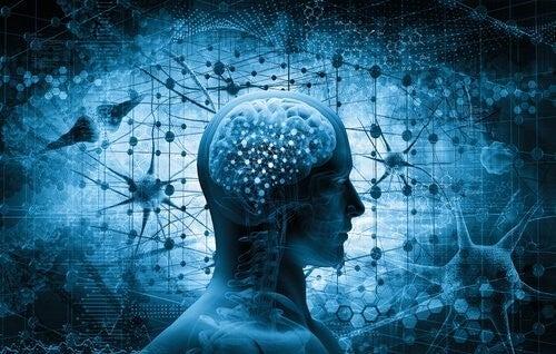 Situazioni critiche: come reagisce il cervello?