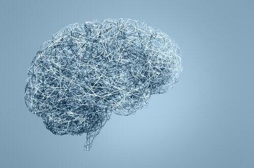 Cervello su sfondo azzurro