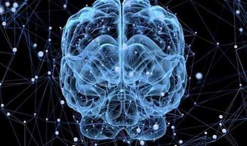 Mozak se odmara ponekad? Cervello