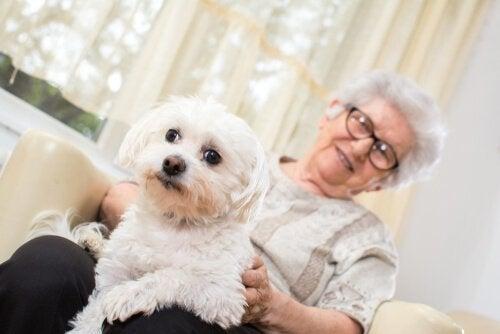 Pet therapy - donna anziana con cane in braccio