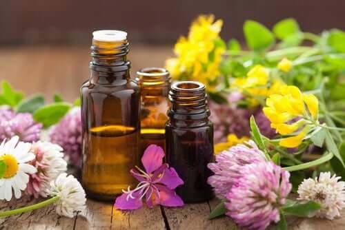 Aromaterapia, il meraviglioso potere degli odori
