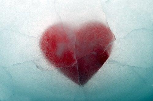 Cuore sotto ghiaccio