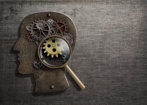 I meccanismi metacognitivi