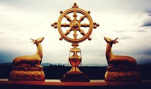 Il Dharma: un percorso verso la conoscenza